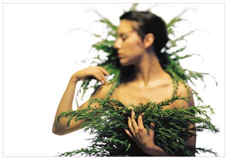 Bitki ve meyvelerle gelen sağlık