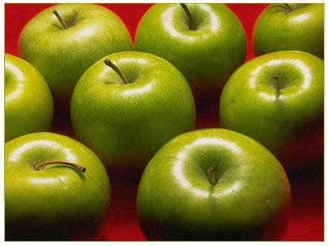 Ekşi Elma (Yabani elma)