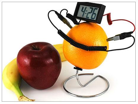 Meyvelerin gücü