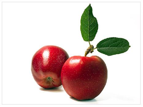 Elma gençleştiriyor