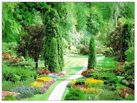 Peyzaj Düzenleme ve Bahçe Bakımı