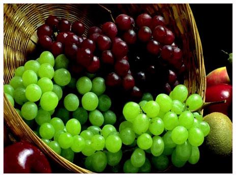 En kuvvetli antioksidanlardan biri: Üzüm